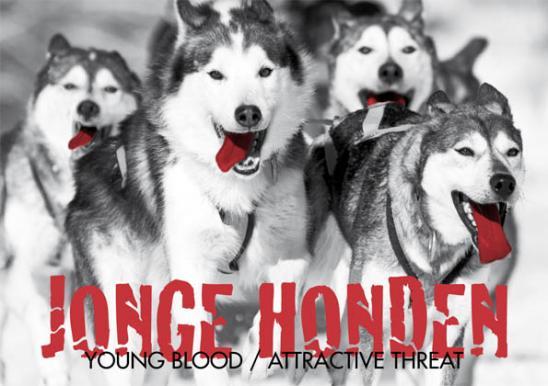 Jonge_honden